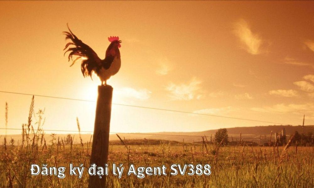 Đăng ký đại lý Agent SV388