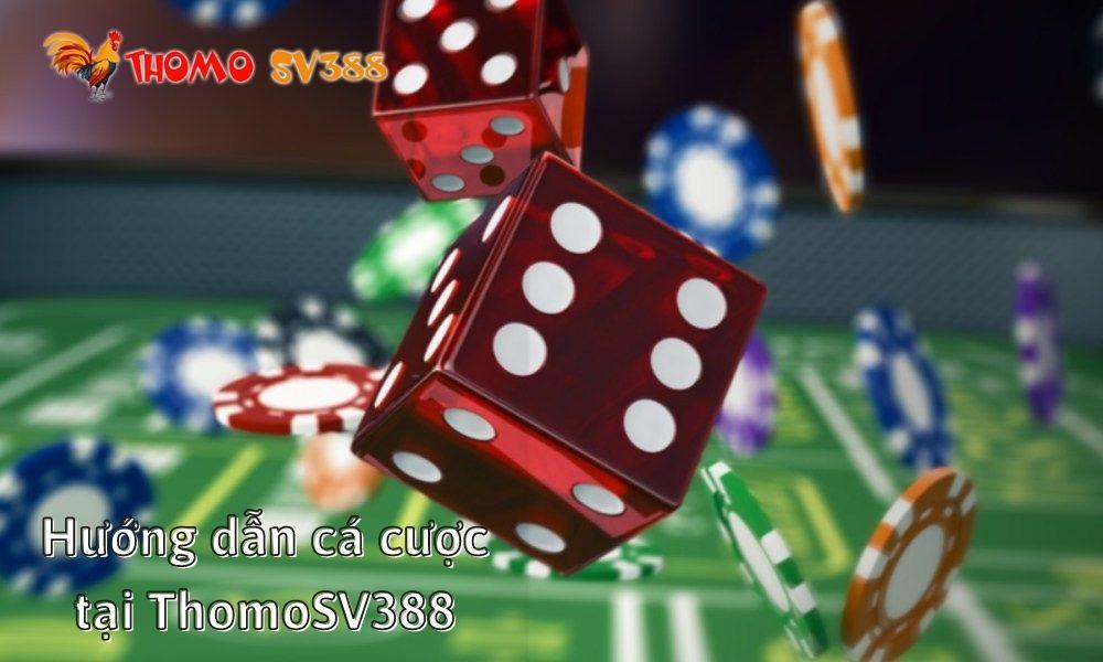 Hướng dẫn cá cược tại ThomoSV388