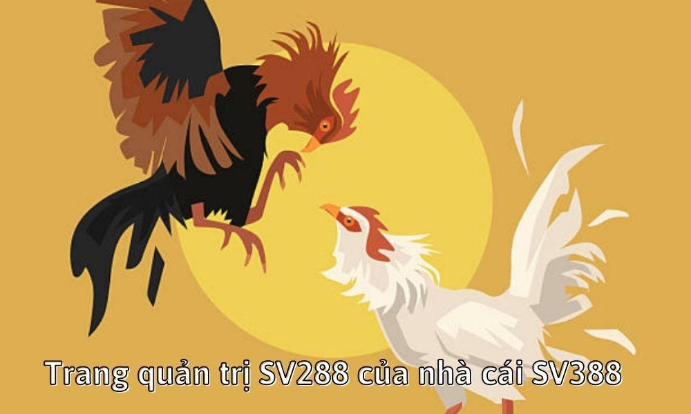 Trang quản trị SV288 của nhà cái SV388